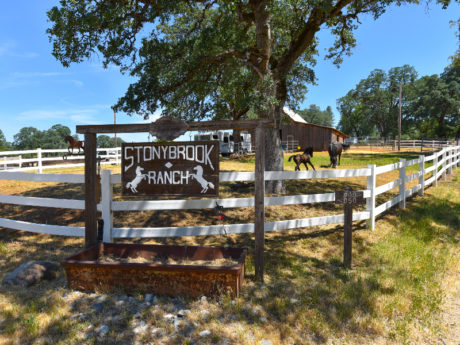 Horse ranch for sale Colfax